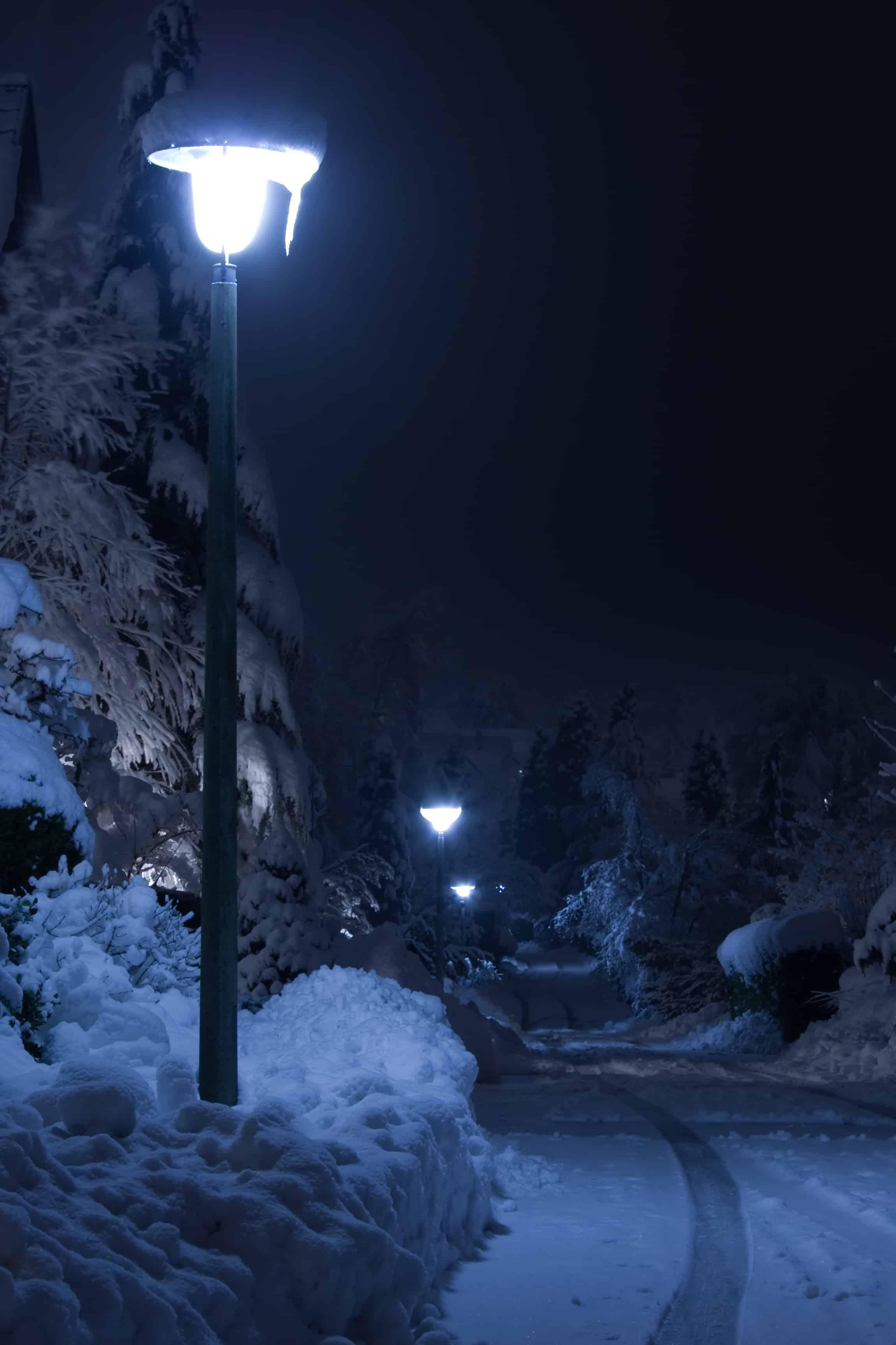 zapada iarna,