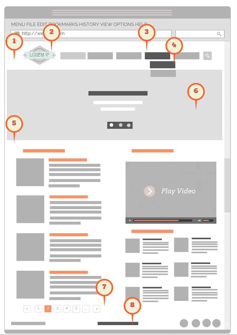 Anatomie pagina web-corcodus