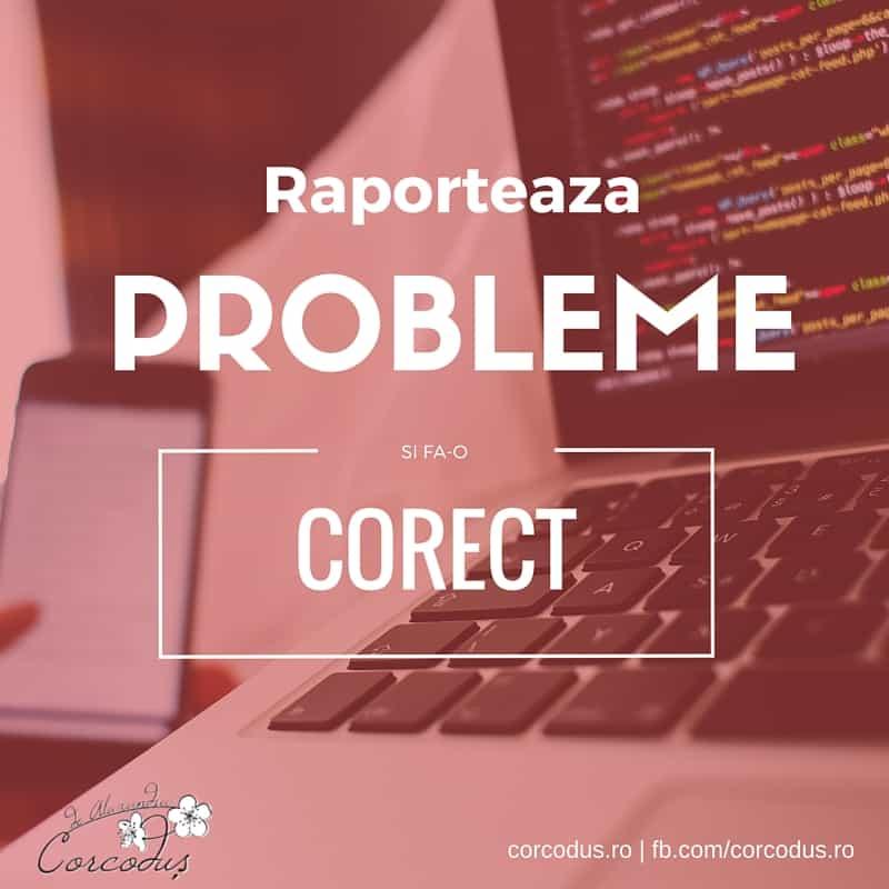 Cum raportezi o problema tehnica - Corcodus