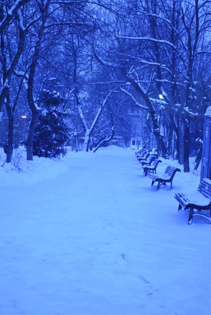 gheata, ninsoare, bacovian