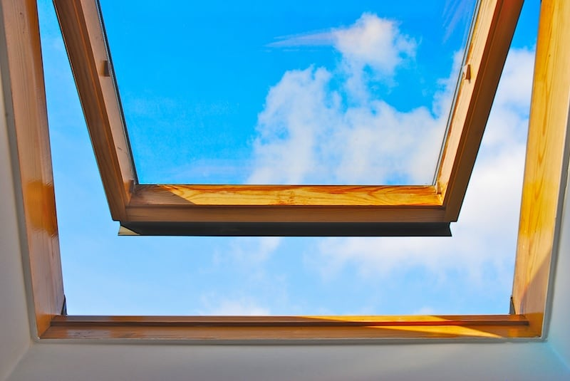 romania-ferestrelor-deschise-corcodus