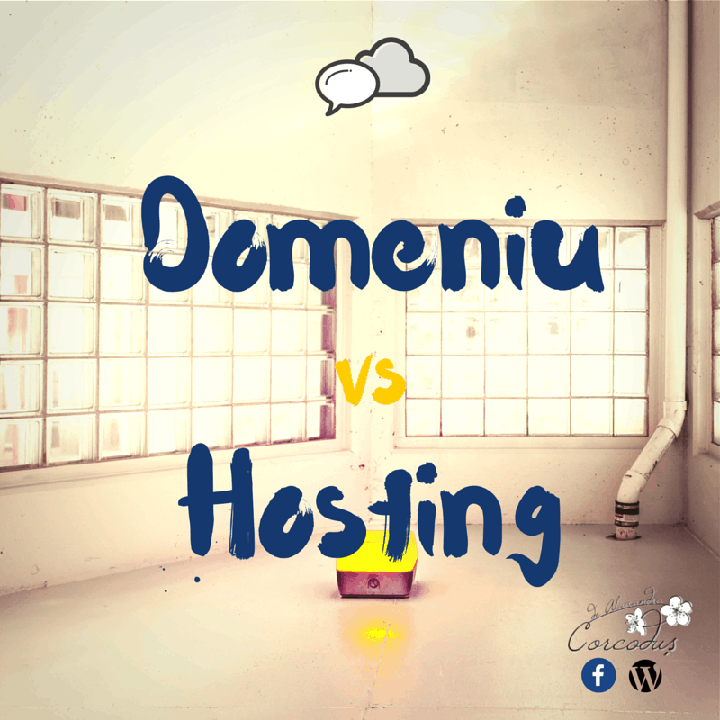 domeniu-vs-hosting