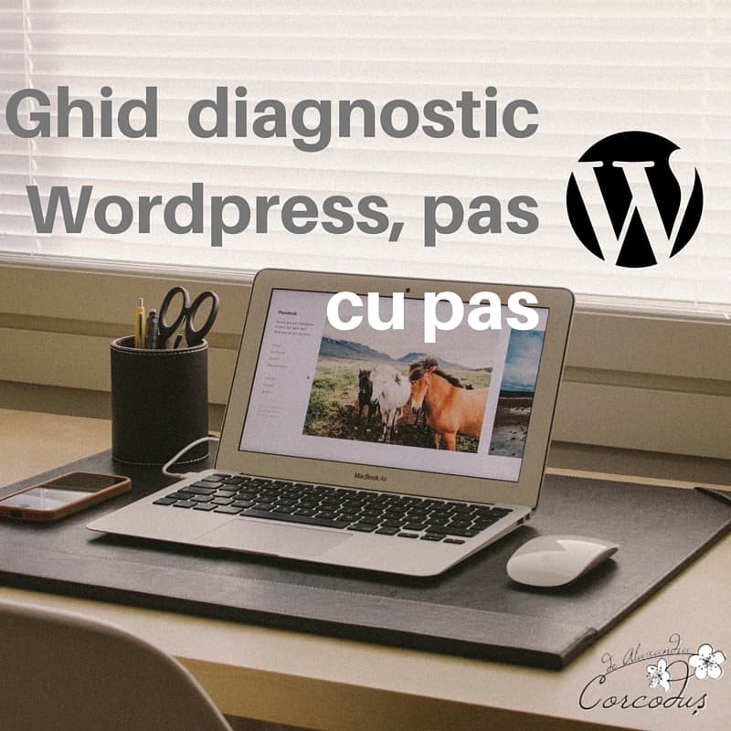 Ghid diagnostic WordPress - corcodus